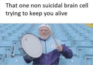 suicidal: That one non suicidal brain cell  trying to keep you alive  IE