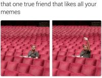 Memes, True, and One: that one true friend that likes all your  memes