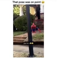 Memes, Iconic, and 🤖: That pose was on point  us  Wait for it This is iconic. MarvelousJokes (Via @Matt17hew2000)