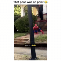 Daquan, Memes, and Amazing: That pose was on point  Wait for ite This is amazing. MarvelousJokes Via @Daquan