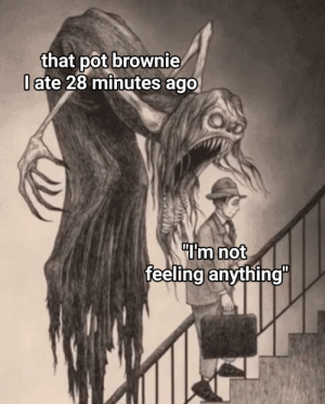 Memes, Tumblr, and Best: that pot brownie  l ate 28 minutes ago  Im not  feeling anything"