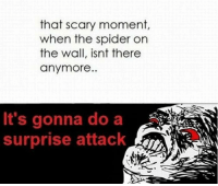 Memes, Spider, and 🤖: that scary moment  when the spider on  the wall, isnt there  anymore.  It's gonna do a  surprise attack  PaA