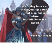 Car, Down, and Hail: that thing in ur car  that you flip down  that also has a  miror  in it idk what it's  called  me  blinding sunlight All hail the flappy thing