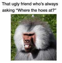 """That ugly friend who's always  asking """"Where the hoes at?"""" This is FACTS we all know this dude right here..."""