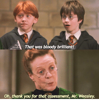Memes, 🤖, and Hogwarts: That was bloody brilliant!  Oh, thank you for that assessment, Mr. Weasley. What animal would you like as your animagus? - ronweasley hermionegranger avadakedavra expeliarmus harrypotter harrypotterscenes harrypotterandthesorcerersstone professormcgonagall transfiguration hogwarts fantasticbeasts fantasticbeastsandwheretofindthem beautyandthebeast cursedchild