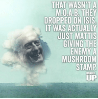 Isis Memes And THAT WASNT A MOAB THEY DROPPED ON ISIS IT