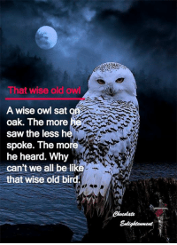 Chocolate enlightenment <3: That wise old owl  A wise owl sat  oak. The more  saw the less h  spoke. The more  he heard. Why  can't we all be like  that wise old bird. Chocolate enlightenment <3