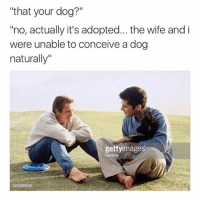 """Funny, Wife, and Dog: """"that your dog?""""  """"no, actually it's adopted... the wife and i  were unable to conceive a dog  naturally""""  gettyimage  Dorama 😂😂😂 