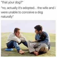 "Life, Memes, and Wife: ""that your dog?""  no, actually it's adopted... the wife and i  were unable to conceive a dog  naturally""  gettyimages  Darama  523206638 25 Entertaining Memes To Get You Amped On Life"