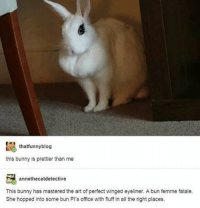 Memes, Mood, and Blog: thatfunny blog  this bunny is prettier than me  annethecatdetective  This bunny has mastered the art of perfect winged eyeliner. A bun femme fatale.  She hopped into some bun Pl's office with fluff in all the right places. current mood: distressed because I will never be as pretty as that bunny - Max textpost textposts