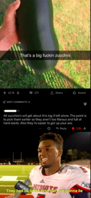 Makes sense: That's a big fuckin zucchini  t Share  Award  12.7k  173  BEST COMMENTS  All zucchini's will get about this big if left alone. The point is  to pick them earlier so they aren't too fibrous and full of  hard seeds. Also they're easier to get up your ass.  o Reply  1.1k  AZBA  They had us in the first half, not gonna lie Makes sense