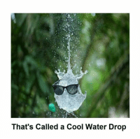 Memes, 🤖, and Cool Water: That's Called a Cool Water Drop