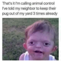 "Dank, Fucking, and Meme: That's it I'm calling animal control  I've told my neighbor to keep their  pug out of my yard 3 times already <p>Put a fucking shock collar on it ffs via /r/dank_meme <a href=""http://ift.tt/2z9ahUD"">http://ift.tt/2z9ahUD</a></p>"