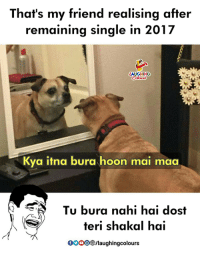 Indianpeoplefacebook, Single, and Friend: That's my friend realising after  remaining single in 2017  LAUGHING  Kya itna bura hoon mai maa  Tu bura nahi hai dost  teri shakal hai  00  083/laughingcolours