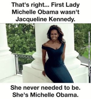 first lady: That's right... First Lady  Michelle Obama wasn't  Jacqueline Kennedy.  She never needed to be.  She's Michelle Obama.  @CraneSlandisS-Facebook.com/Crane.Stephen.landis