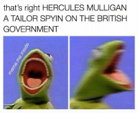 Memes, British, and Government: that's right HERCULES MULLIGAN  A TAILOR SPYIN ON THE BRITISH  GOVERNMENT Tag a friend who misses Oak