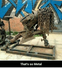 Metal: That's so Metal