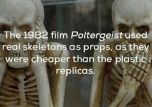 27 Random Facts You Probably Didn't Know  27 Random Facts You Probably Didn't Know: The 1982 film Poltergeist used  real skeletons as props, as they  were cheaper than the plastic  replicas. 27 Random Facts You Probably Didn't Know  27 Random Facts You Probably Didn't Know