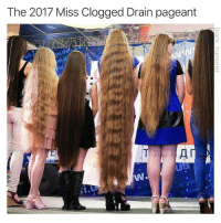 pageant: The 2017 Miss Clogged Drain pageant  Il  ua