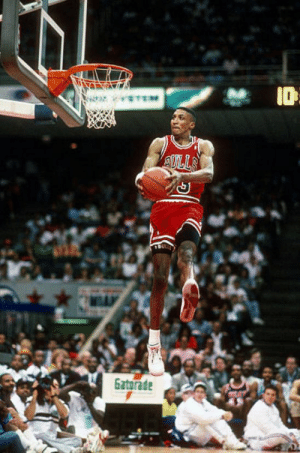 The 2020 NBA Dunk contest judges:  Scottie Pippen * Dwyane Wade Candace Parker ** Chadwick Boseman Common  * Competed in 1990 ** Won the McDonalds HS Dunk Contest https://t.co/5cqdhLc35N: The 2020 NBA Dunk contest judges:  Scottie Pippen * Dwyane Wade Candace Parker ** Chadwick Boseman Common  * Competed in 1990 ** Won the McDonalds HS Dunk Contest https://t.co/5cqdhLc35N