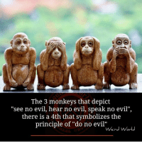 """The 3 monkeys that depict  see no evil, hear no evil, speak no evil""""  there is a 4th that symbolizes the  principle of """"do no evil""""  Weird World"""