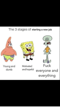 Dumb, Memes, and Reddit: The 3 stages of starting a new job  Fuck  everyone and  everything  Young and  dumb  Motivated  and hopeful eve