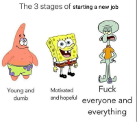 Dumb, Reddit, and Fuck: The 3 stages of starting a new job  Motivated  Fuck  Young and  dumb  and hopeful evervone and  everything