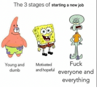 Dumb, Fuck, and Job: The 3 stages of starting a new job  Motivated  Fuck  Young and  dumb  and hopeful everyone and  everything