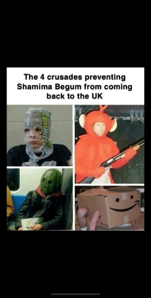 That'll do it: The 4 crusades preventing  Shamima Begum from coming  back to the UK That'll do it