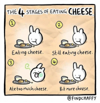 Funny, Too Much, and Cheese: THE 44 STAGES OF EATING CHEESE  2  Eating cheese.  Still eating cheese.  3  Ate too much cheese. Bit more cheese.  @FINDCHAFFY For cheese lovers