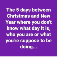 New Year's: The 5 days between  Christmas and New  Year where you dont  know what day it is,  who you are or what  you're suppose to be  doing...