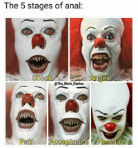 Bitch, Memes, and Anal: The 5 stages of anal:  Shock  Anger  @The_Bitch Diaries  Pain Acceptance Pleasure This is IT 🤡 Tag a friend 👭👬👫 and follow me 😜 Follow @The_Bitch_Diaries 🎈