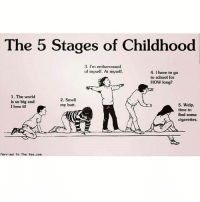 Butt, Love, and Meme: The 5 Stages of Childhood  3. I'm embarrassed  of myself. At myself.  4. I have to go  to school for  How long?  1. The world  2. Smell  is so big and  5. Welp.  my butt.  I love it!  time to  find some  cigarettes.  Married To The Sea.com Tag yourself I'm 3 . . me meme memes memesdaily memesaremydreams tumblr tumblrtextpost tumblrfunny tumblraccount textpost textposts textpostaccount textposttumblr textpostfunny tumblrgirl creamurtartar ifunny same relatable relatablepost relatablequote