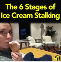 Memes, Ice Cream, and 🤖: The 6 Stages of  Ice Cream Stalkina  the blueb Repost @sniffandbarkens ・・・ Do you think she can see us? 👀⠀ Via @the_blueboys ⠀ _________________________________ pawsitivelyprecious dogsarefamily adoptfosterrescue furbabies dogsdogsdogsdogs ILoveDogs BePawsitive🐾 adoptdontshop paws dogshaveheartsofgold dogmom rescuedismyfavoritebreed