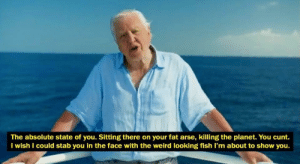 David Attenborough: The absolute state of you. Sitting there on your fat arse, killing the planet. You cunt.  I wish I could stab you in the face with the weird looking fish I'm about to show you. David Attenborough