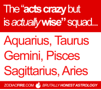 "The ""acts crazy but is actually wise"" #zodiac squad... 🌟  More at Zodiac Fire 🔥: The acts crazy but  is actually wise"" squad.  AquariuS, TaurusS  Gemini, Pisces  Sagittarius, Aries  0  ZODIACFIRE.COM  BRUTALLY HONEST ASTROLOGY The ""acts crazy but is actually wise"" #zodiac squad... 🌟  More at Zodiac Fire 🔥"