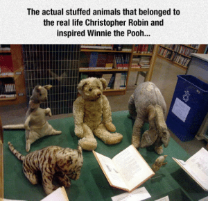 Animals, Life, and Tumblr: The actual stuffed animals that belonged to  the real life Christopher Robin and  inspired Winnie the Pooh... srsfunny:Winnie The Pooh Inspiration