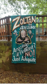 Memes, Just, and Adequate: the  ADEQUATE  Brillant?  Just Adequate  mazin Memes 20