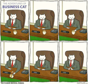 Business, Irl, and Me IRL: THE ADVENTURES OF  BUSINESS CAT  CEO  CEO  CEO  CEO  CEO  CEO  HAPPYJAR.co  TOM FONDER/RACHAEL ROBINS Me irl