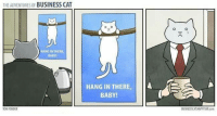 The Adventures of Business Cat: THE ADVENTURES OF  BUSINESS CAT  HANG IN THERE  BABY  TOMRONDER  HANG IN THERE,  A GA  BABY!  BUSINESSKATHAPPYIAR com The Adventures of Business Cat