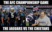 Battle of the big cats! (If you aren't including the zebras) https://t.co/ewP7mKuiEB: THE AFC CHAMPIONSHIP GAME  BORTLES  6 o  @NFL MEMES  THE JAGUARS VS THE CHEETAHS Battle of the big cats! (If you aren't including the zebras) https://t.co/ewP7mKuiEB