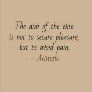 Aristotle, Pain, and Aim: The aim of the wWise  pleasure,  is not to secure  but to avoid pain.  - Aristotle