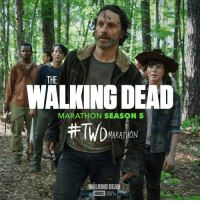 Get out the streamers, champagne and TV remote. The #TWD marathon continues all day.: THE  ALKING DEAD  MARATHON SEASON 5  #TWDMARATHON  WALKING DEAD  aMC  FEB 12  泄 Get out the streamers, champagne and TV remote. The #TWD marathon continues all day.