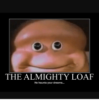 Someone HMU: THE ALMIGHTY LOAF  He haunts your dreams... Someone HMU