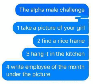 Memes, Girl, and Your Girl: The alpha male challenge  1 take a picture of your girl  2 find a nice frame  3 hang it in the kitchen  4 write employee of the month  under the picture DV Brandi