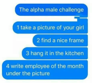 Girl, Your Girl, and Nice: The alpha male challenge  1 take a picture of your girl  2 find a nice frame  3 hang it in the kitchen  4 write employee of the month  under the picture