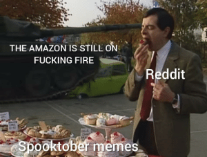 Amazon, Fire, and Fucking: THE AMAZON IS STILL ON  FUCKING FIRE  Reddit  INCLE  Spooktober memes Remember it is still burning