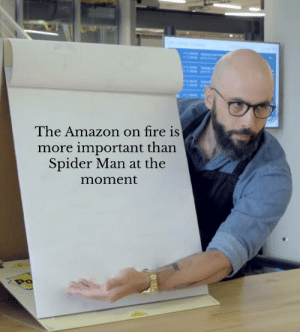 Oh god an opinion: The Amazon on fire is  more important than  Spider Man at the  moment  Po Oh god an opinion