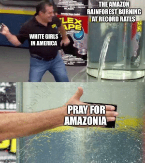 About right: THE AMAZON  RAINFOREST BURNING  AT RECORD RATES  LACK  LEX  APE  WHITE GIRLS  IN AMERICA  PRAY FOR  AMAZONIA  imgflip.com About right