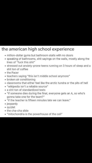 "That average highschool: the american high school experience  million-dollar gyms but bathroom stalls with no doors  speaking of bathrooms, shit sayings on the walls, mostly along the  lines of ""fuck this shit""  stressed out anxiety-prone teens running on 3 hours of sleep and a  shit ton of coffee  the Pacer  teachers saying ""this isn't middle school anymore""  . broken air conditioning  classrooms that either feel like the arctic tundra or the pits of hell  . ""wikipedia isn't a reliable source""  . a shit ton of standardized tests  ""if someone dies during the final, everyone gets an A, so who's  gonna take one for the team?""  .""if the teacher is fifteen minutes late we can leave.""  jeopardy  quizlet  the cha-cha slide  . ""mitochondria is the powerhouse of the cell"" That average highschool"